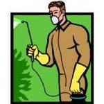 Régime minceur... Pourquoi les pesticides sont mauvais pour notre régime minceur